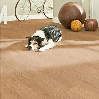 DECOLIFEWatercork Designbelag Landhausdiele Primal Oak