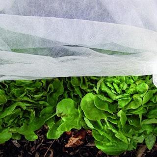 Noor Gartenvlies Schutzvlies 1,5x10m 15gr Frühbeetvlies