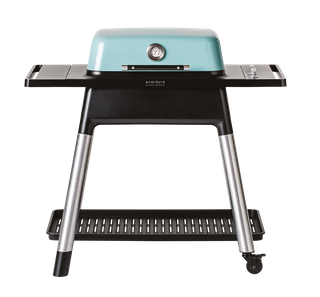 everdure FORCE Gasgrill mint mit zwei Brennern