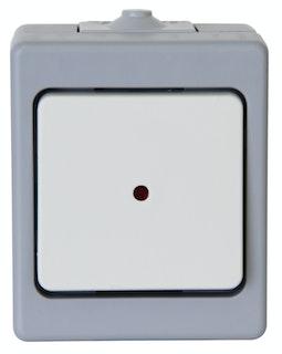 Kopp Kontrollschalter AP-Feuchtraum STANDARD beleuchtet, grau