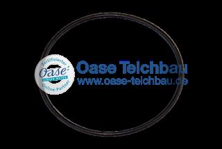 Oase O-Ring Viton 30 x 1 SH80 Lampenschutz (23871)