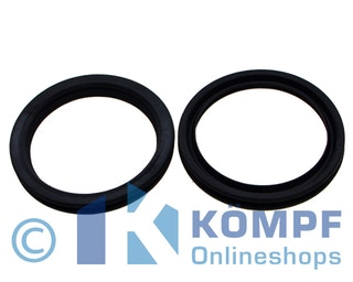 Oase Dichtung 100 Biotec 30 / 36 (34285)