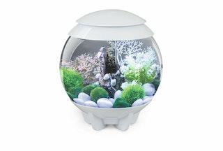 biOrb Deko Aquarium HALO 15 mit MCR - 15 Liter