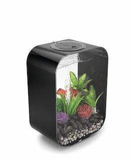 biOrb Deko Aquarium LIFE 15 mit MCR - 15 Liter
