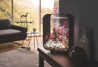 biOrb Deko Aquarium LIFE 15 mit LED - 15 Liter