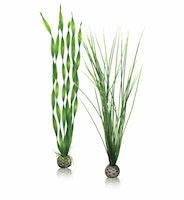 biOrb Pflanzen Set groß grün (46057)