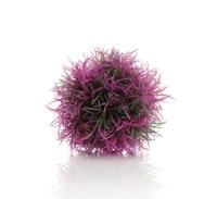 biOrb Gewächsball lila (46064)