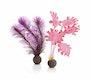 biOrb Seetang Set klein pink (46081)