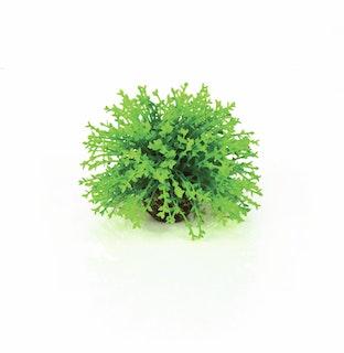 biOrb Blumenball grün (46087)