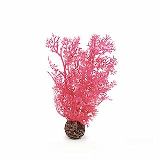 biOrb Hornkoralle klein pink (46092)