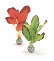 biOrb Seidenpflanzen Set klein grün und rot (46099)