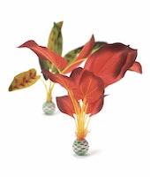 biOrb Seidenpflanzen Set groß grün & rot (46102)