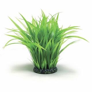 biOrb Grasring groß grün (46105)