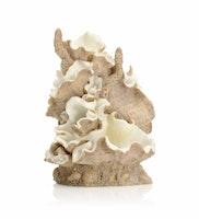 biOrb Muschel Ornament mittel (46108)