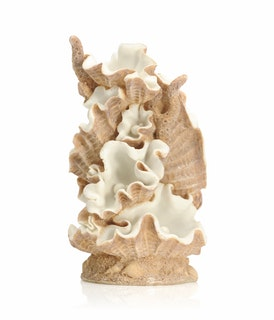 biOrb Muschel Ornament groß (46109)