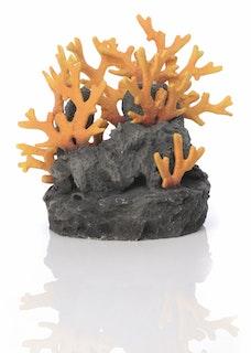 biOrb Lavagestein mit Feuerkoralle Ornament (46123)