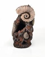 biOrb Muschelbaumstumpf Ornament