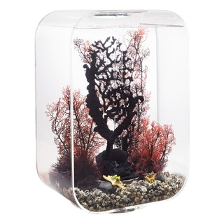 biOrb LIFE 45 MCR transparent (72056)