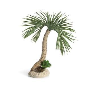 biOrb Palme Seychellen L (72680)