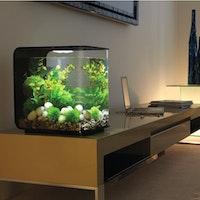 biOrb Deko Aquarium FLOW 30 mit MCR - 30 Liter