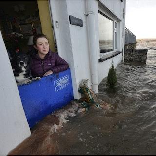 Öko-Tec Floodgate Türsperre
