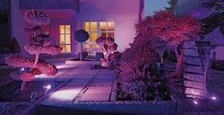 RGB_LED_Gartenaufnahme_04