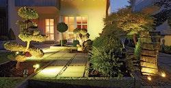 RGB_LED_Gartenaufnahme_072