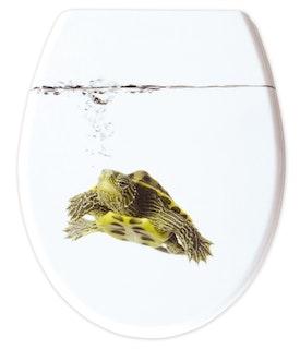 Sanitop WC-Sitz Dekor Turtle