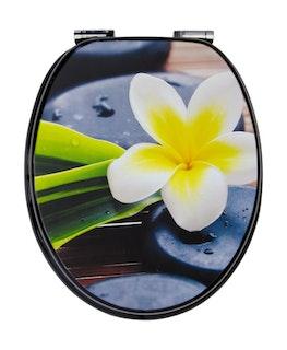 Sanitop WC-Sitz Dekor Spa Flower mit Soft-Schließ-Komfort und Fast Fix