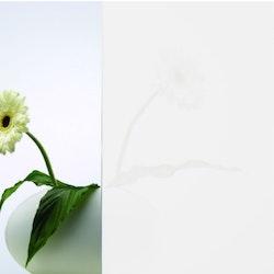 SPRINZ-Glas-diamantweiss-auf-weissglas