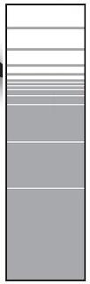 T&J VETRO SATINATO Glas-Sichtschutz Typ Rechteck 180