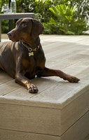 Weltholz millboard Terrassendiele ENHANCED GRAIN Golden Oak