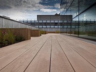 Weltholz millboard Terrassendiele ENHANCED GRAIN Jarrah