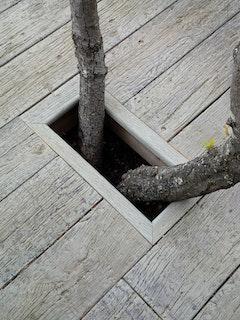Weltholz millboard Terrassendiele WEATHERD Driftwood